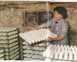 VILLIERS - ILLOIS - Thérèse Villiers dans sa cave à fromage en 1978